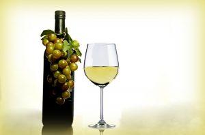 controllo-di-gestione-vitivinicolo